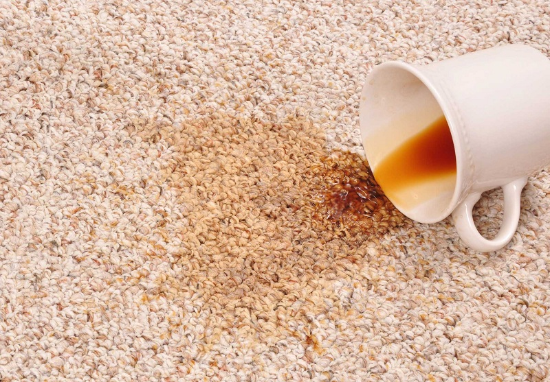 How To Remove Coffee Stains From Carpet Creative Home Idea